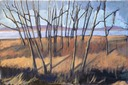 VWM Untitled (Barren Trees), oil on canvas, 24 x 36 inchesWEB